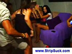 Party girls watch this...