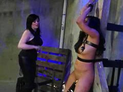 Bound Whipped And Toye...
