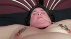 Xhamster - Part. 2 BBW Pet Missio...