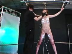 Asian Anal Hooks And Toys