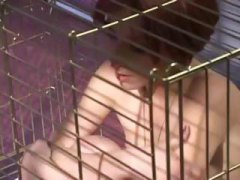 Bitches Behind Bars 3