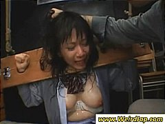 Two Asian chicks put i...