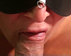 Sensual blowjob close up