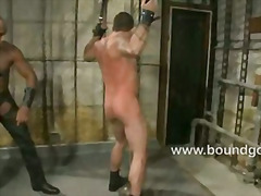 Master Avery chains Et...