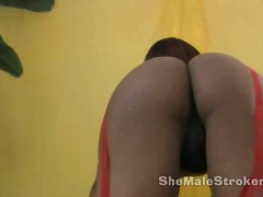 Ms goodbar red stockin... from aShemaleTube