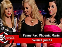 The Sex Awards from Vporn